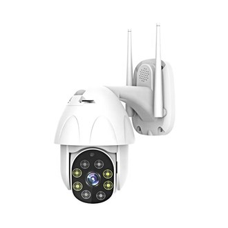 Outdoor PTZ Wireless camera HD 720p - Wall mount IP66